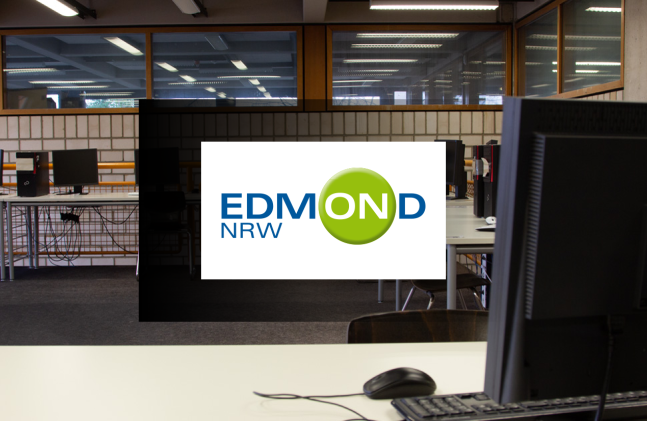 internetportale_edmond_hintergrund.png